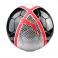 Puma Futsal Balls